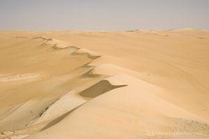 egypt2013_westerndeserts26.jpg